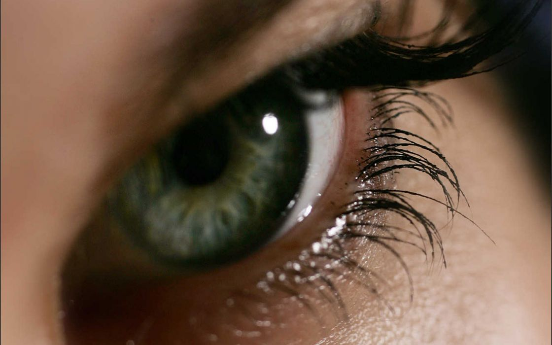 Eyes green eyes wallpaper