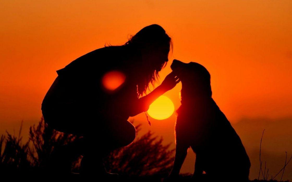 Sunset love dogs master dusk wallpaper