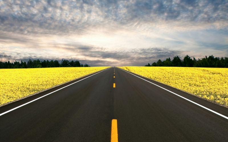 Nature highway roads wallpaper