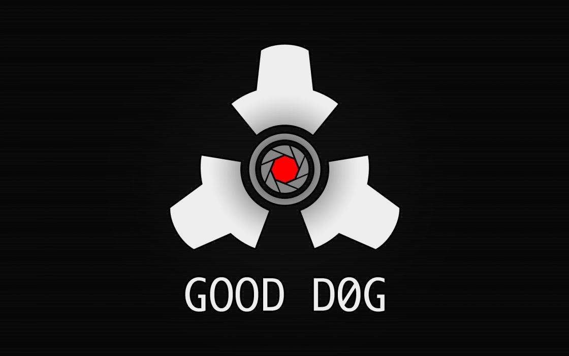 Life dogs wallpaper