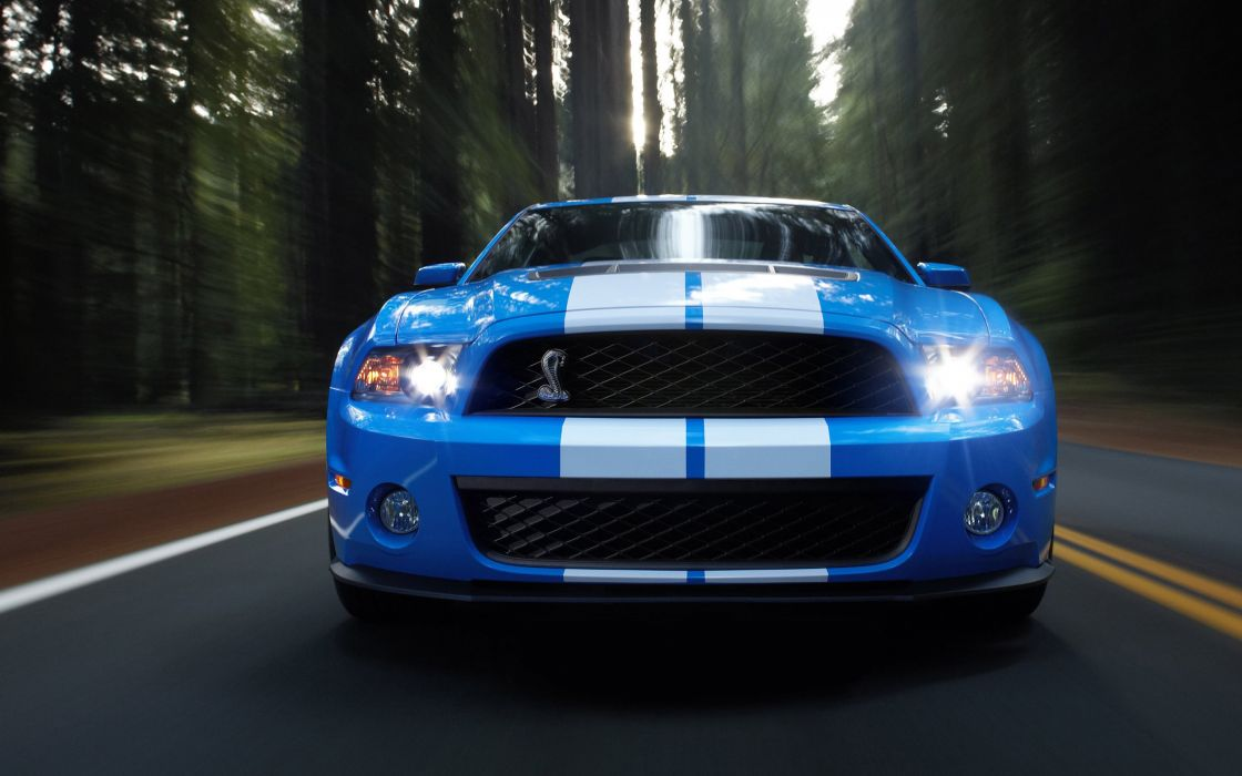 Cars shelby mustang wallpaper