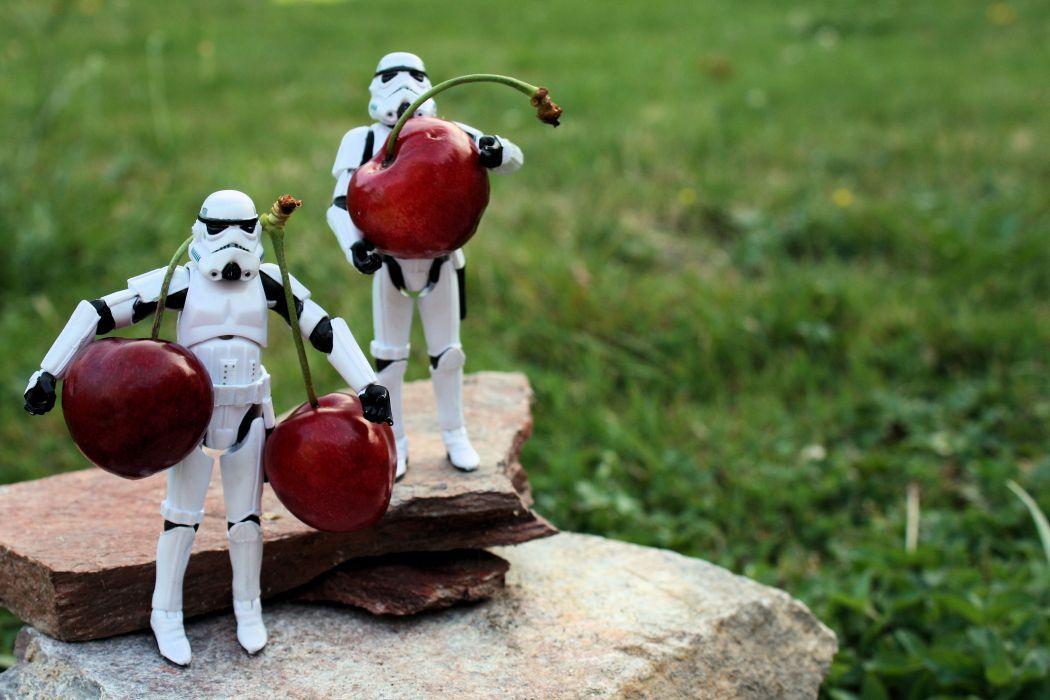 Stormtroopers grass rocks cherries grasshopper wallpaper