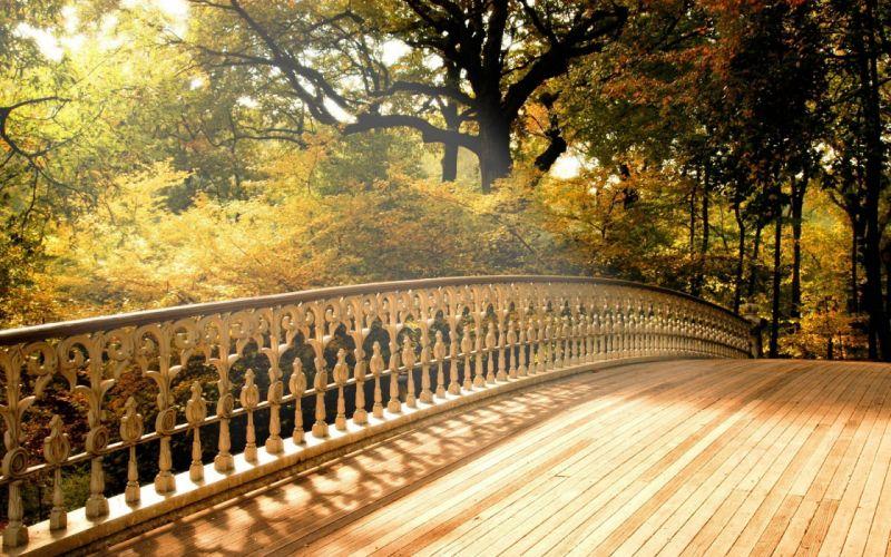Trees seas bridges wallpaper