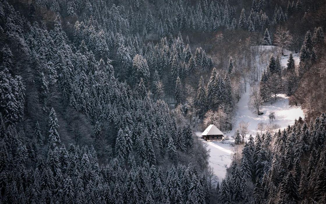 Winter (season) snow white forest houses nordic wallpaper