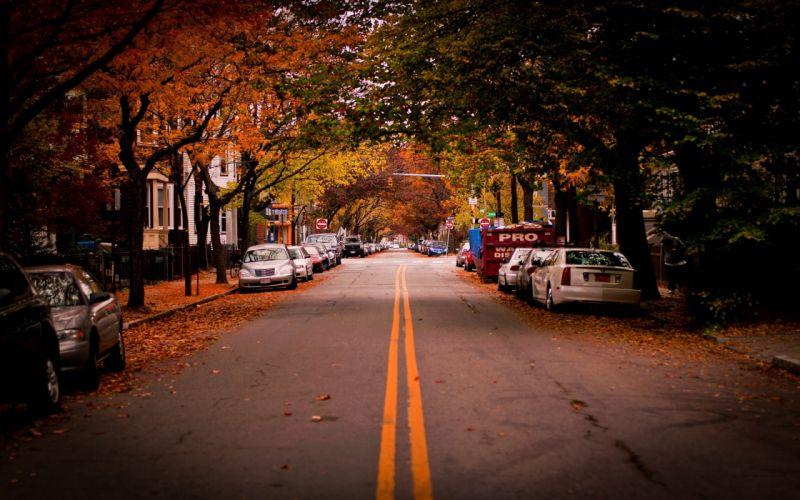 Landscapes autumn (season) cars leaves roads vehicles wallpaper