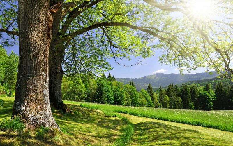 Landscapes nature skyscapes wallpaper