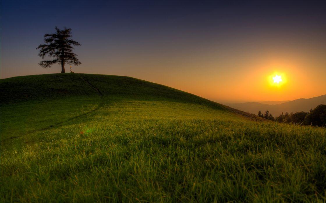 Sunset landscapes fields wallpaper