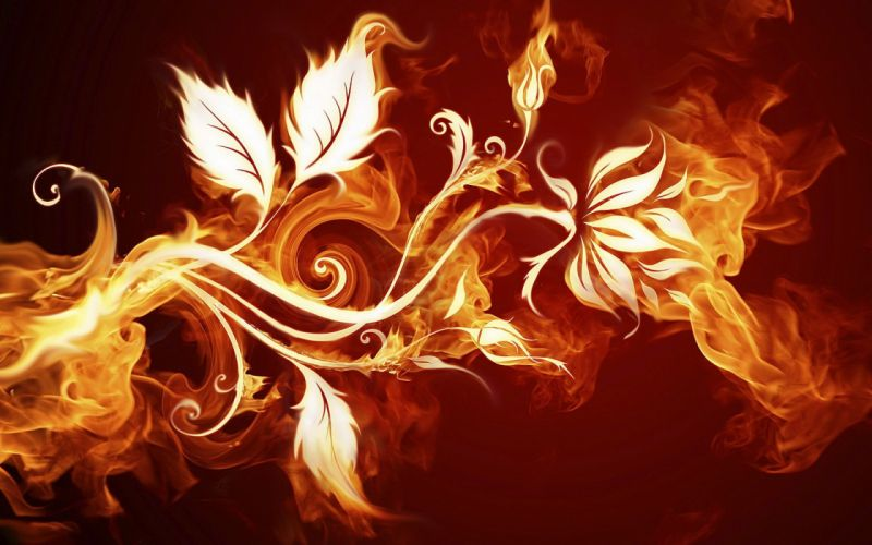 Abstract multicolor fire artwork floral wallpaper