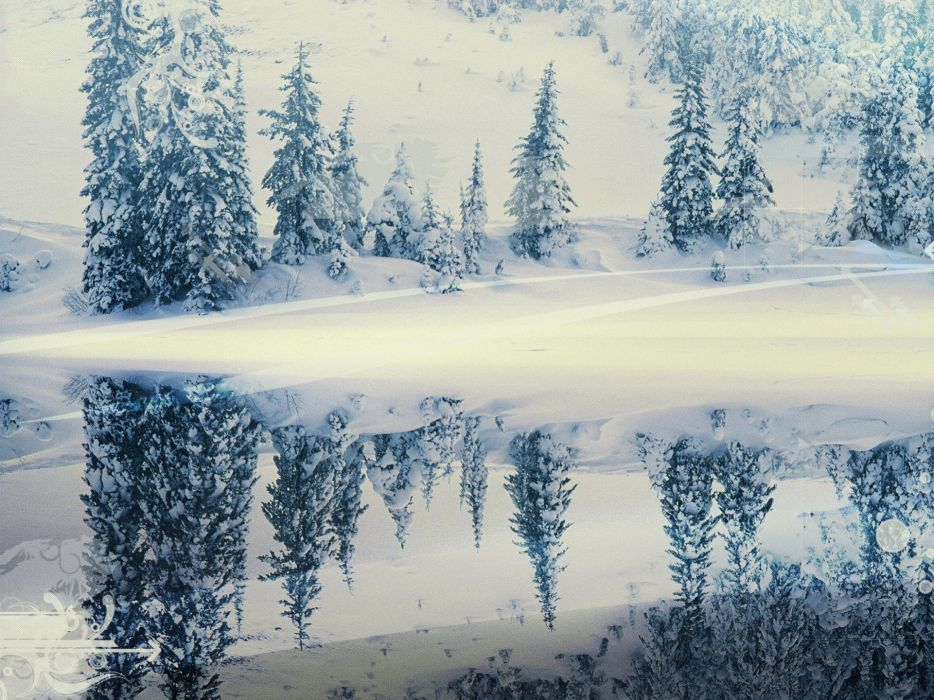 Nature snow trees winter landscapes reflections watermark wallpaper