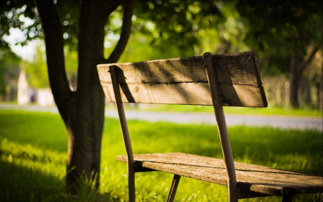 Green grass bench wallpaper