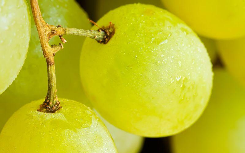 Up fruits grapes wallpaper