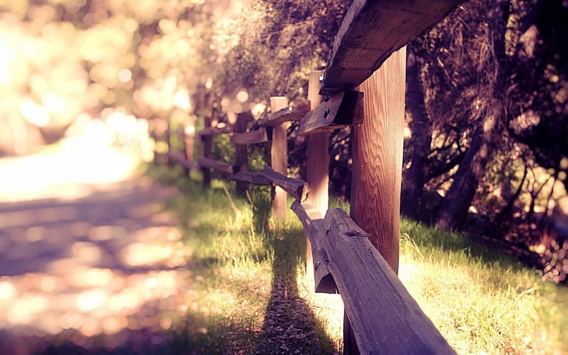 Landscapes fences grass bokeh sunlight wallpaper