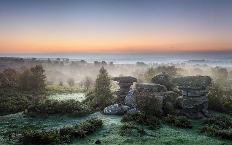 Landscapes nature trees rocks fog wallpaper