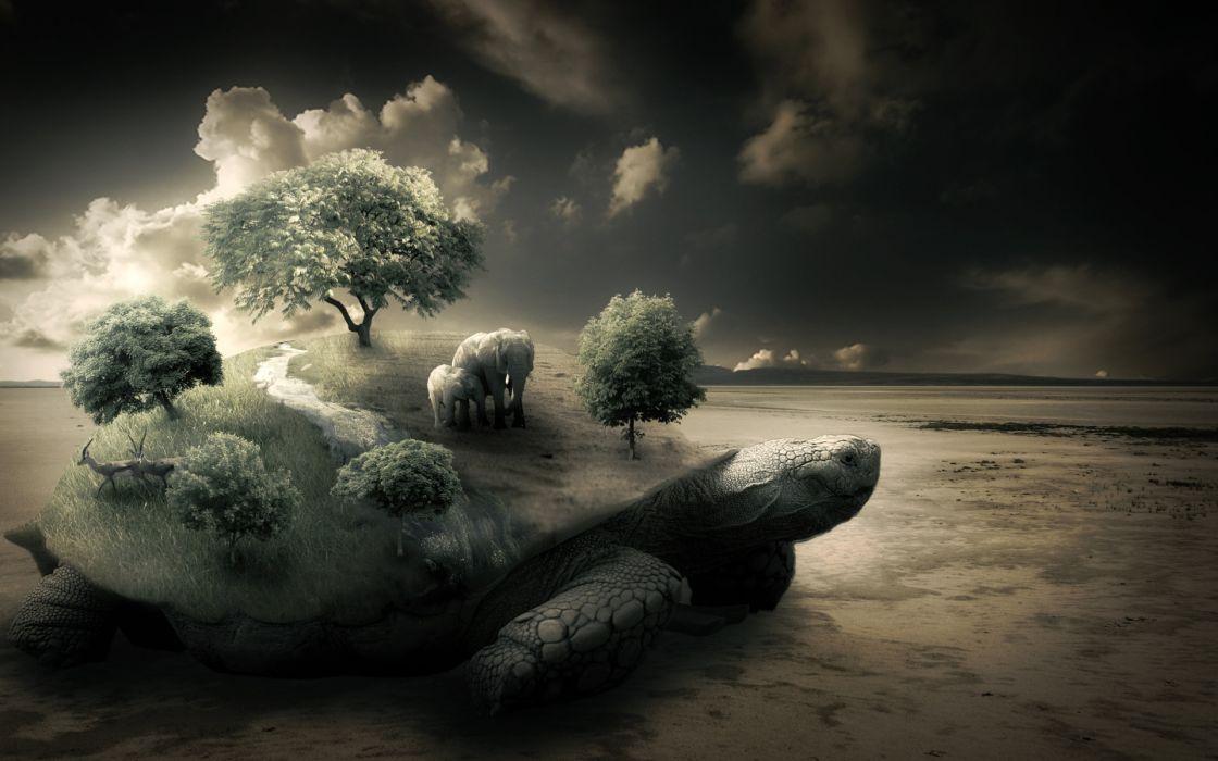 Nature trees turtles elephants photomanipulations wallpaper