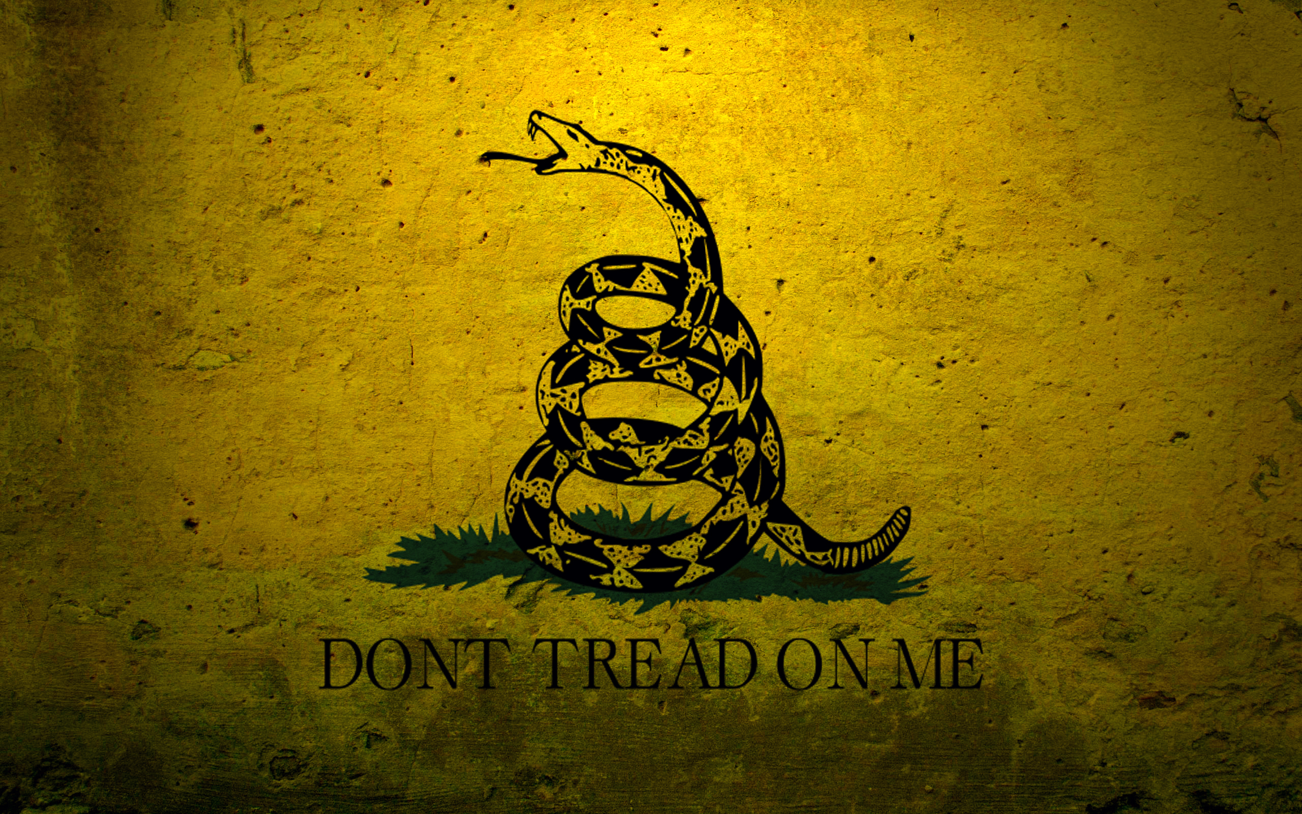 Military Flags Usa Navy Concrete Dont Tread On Me Gadsden Flag Wallpaper