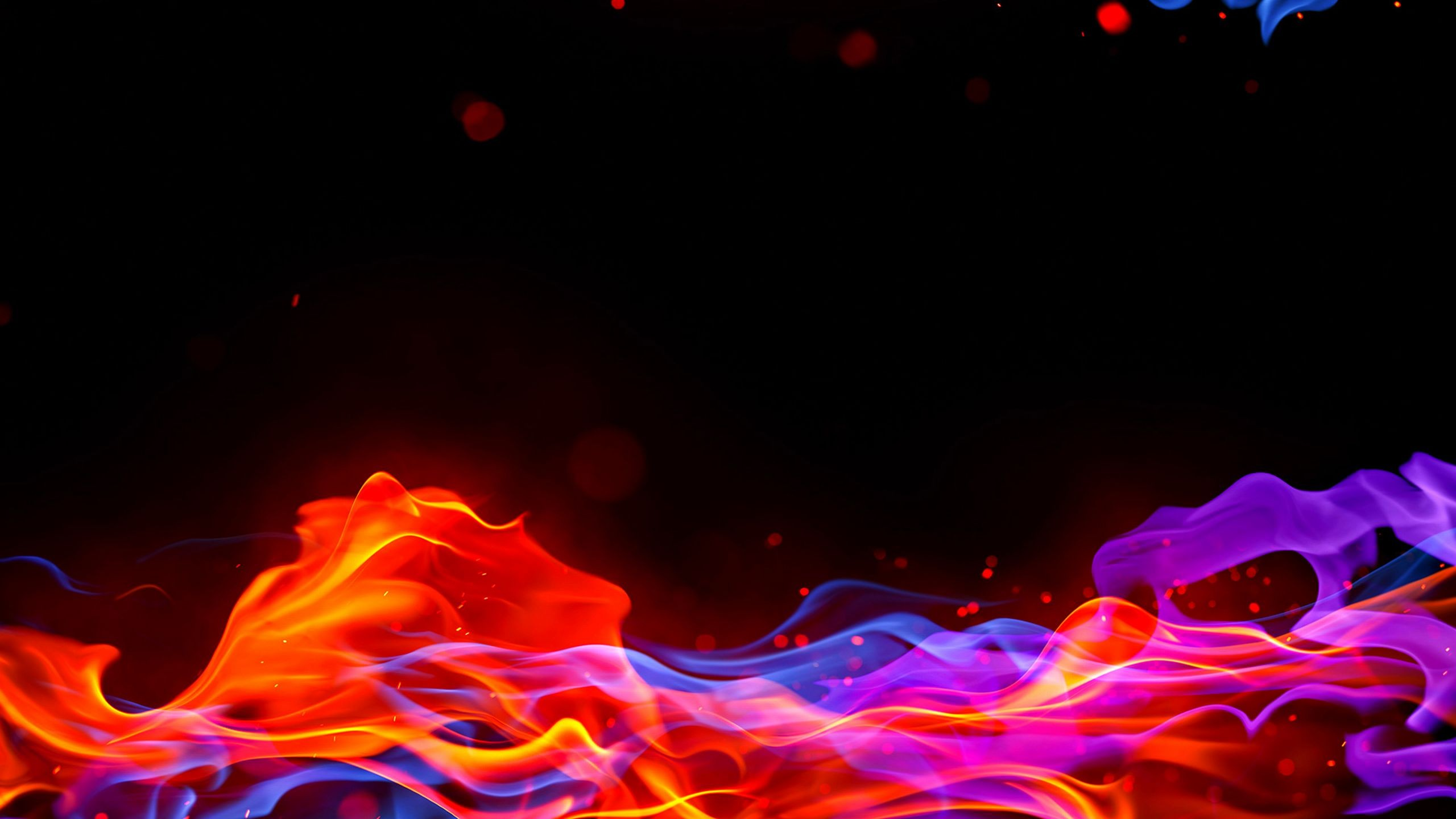 Abstract Flames Multicolor Wallpaper 2560x1440 20309