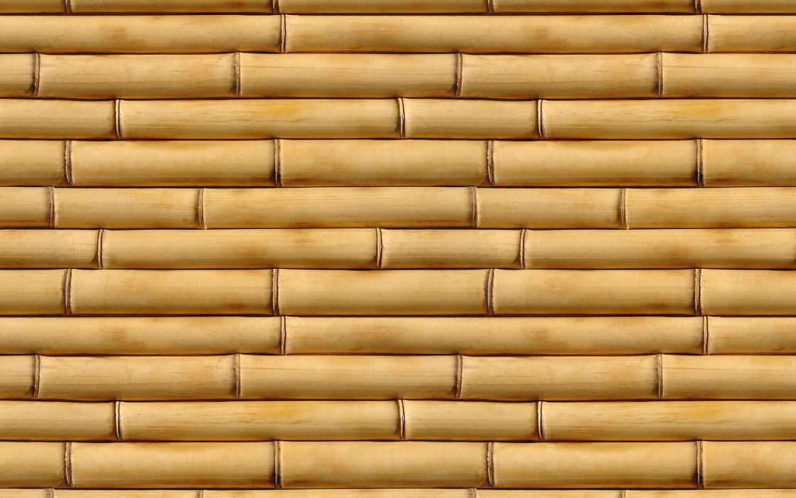Abstract multicolor bamboo textures wallpaper