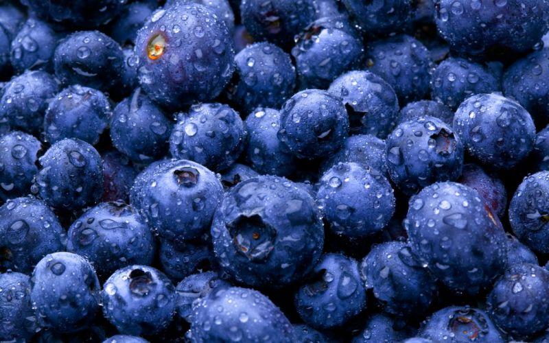 Fruits blueberries wallpaper