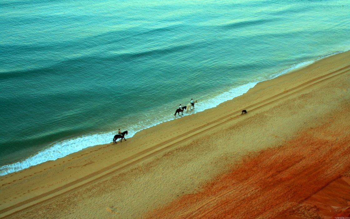 Water landscapes beach sand animals people horses wallpaper