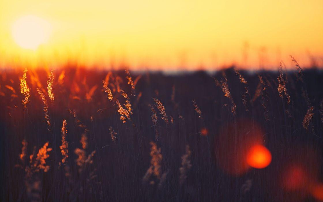 Sunset landscapes nature summer (season) wallpaper
