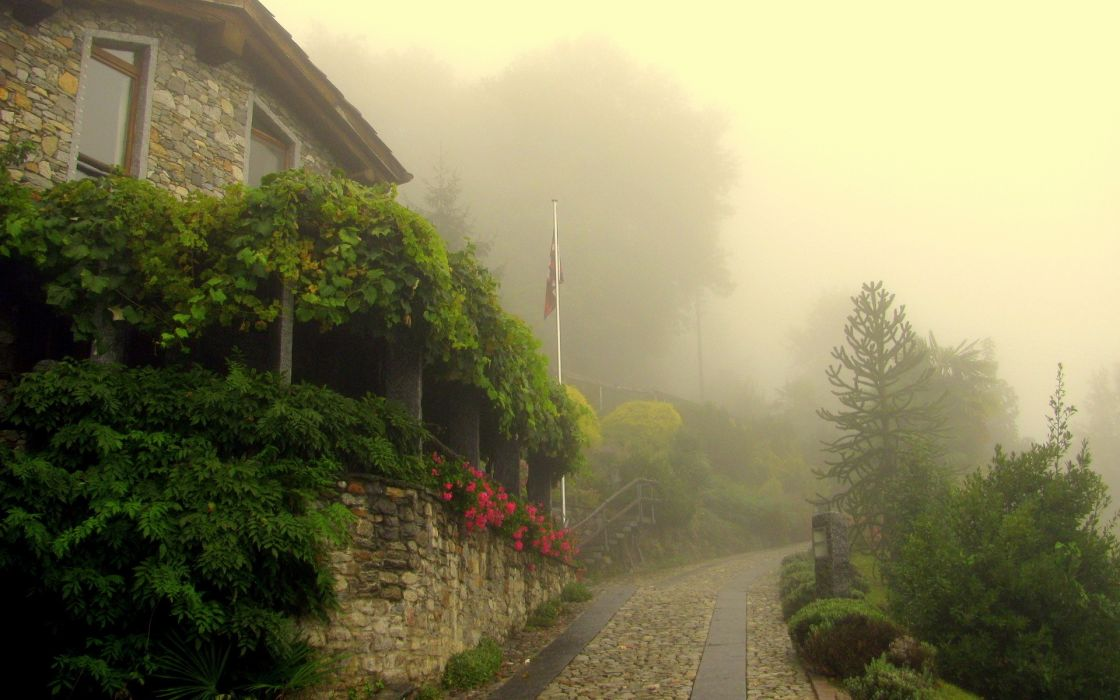 Trees fog buildings flags town roads villages rivers wallpaper
