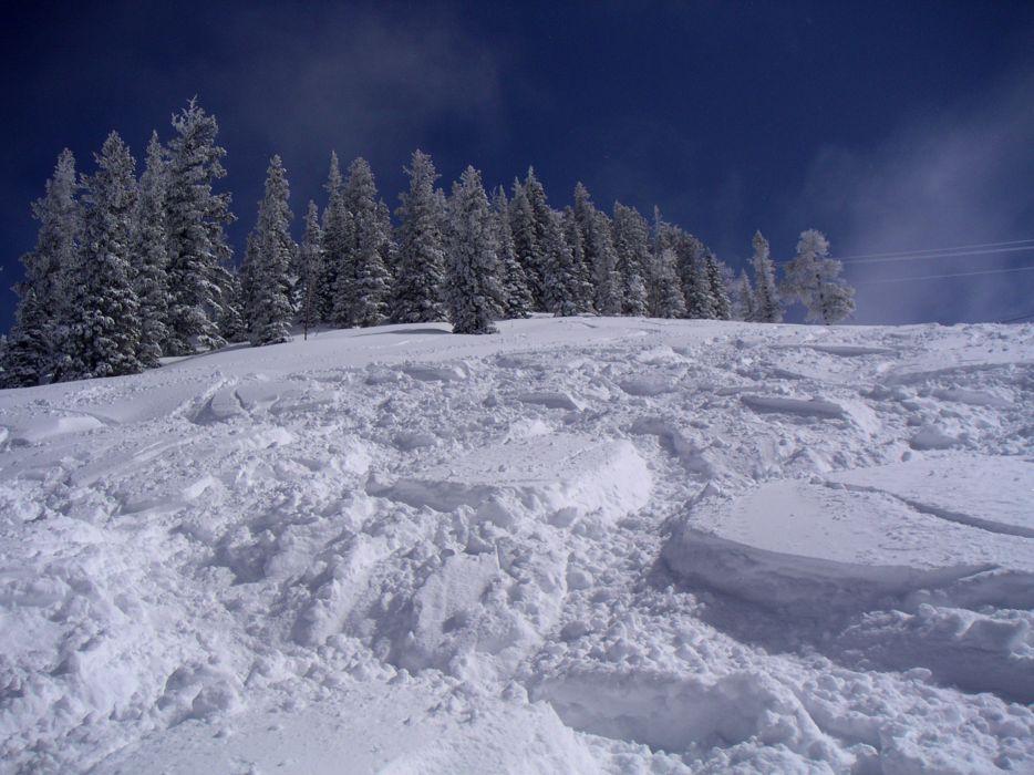 Snow trees ski winter landscapes wallpaper