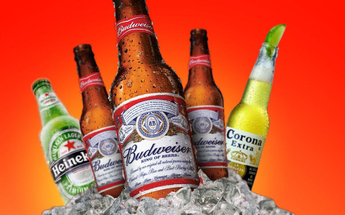 Beers alcohol heineken budweiser ice cubes wallpaper
