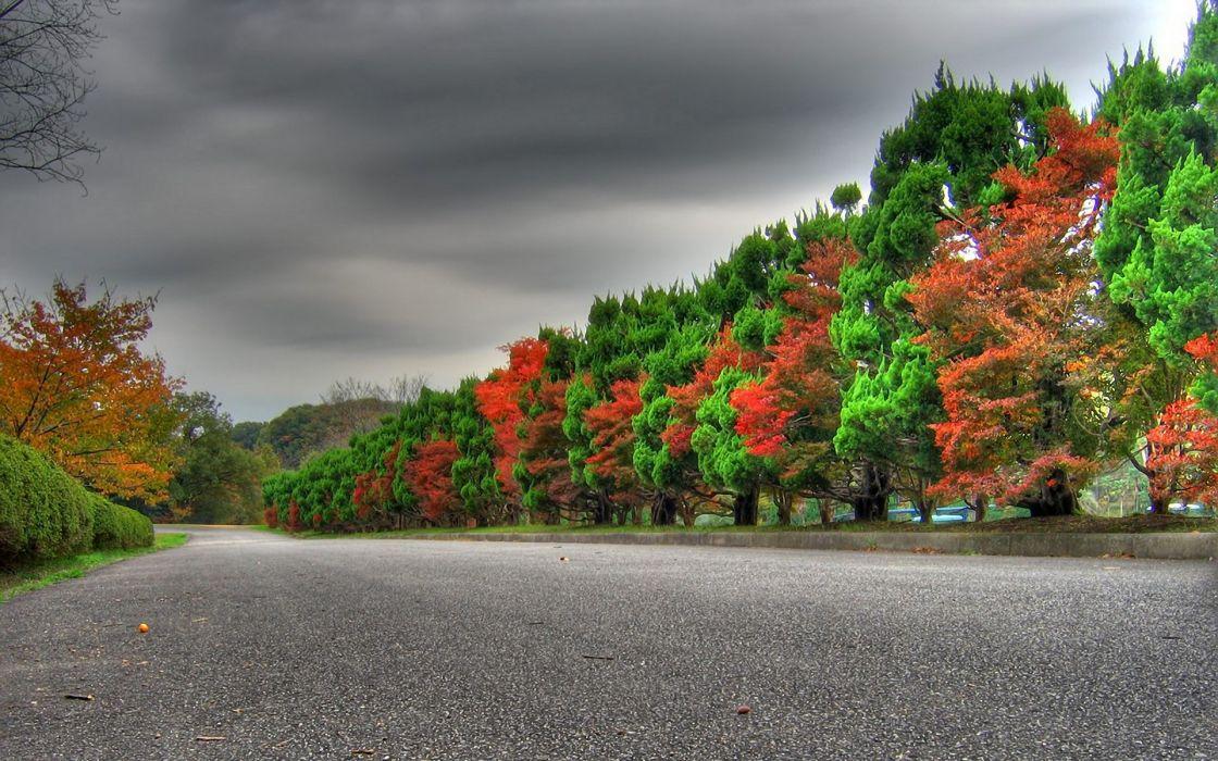 Landscapes autumn (season) seasons roads wallpaper