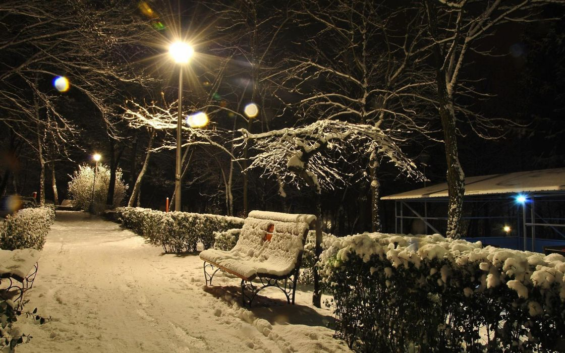 winter seasons snow photography bench pathway night lights trees wallpaper