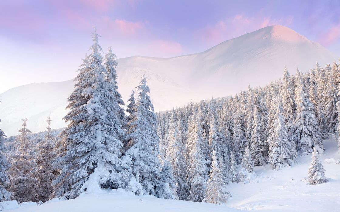 nature winter seasons snow trees forest mountains landscapes wallpaper