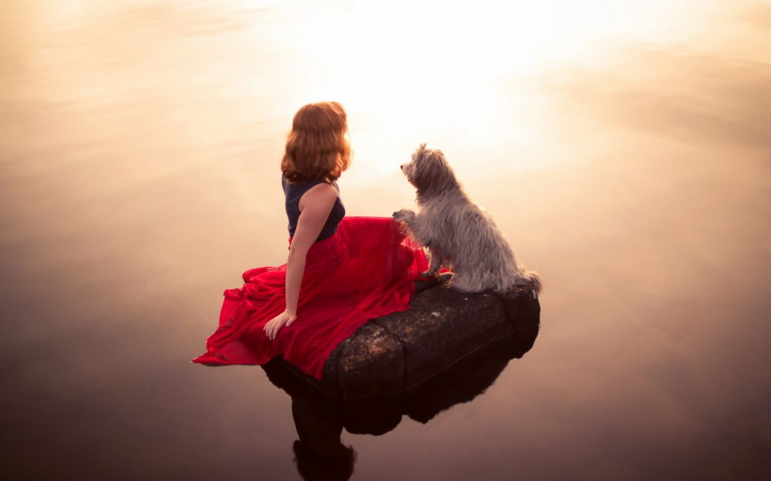 women females girls models mood situations animals dogs water reflections wallpaper
