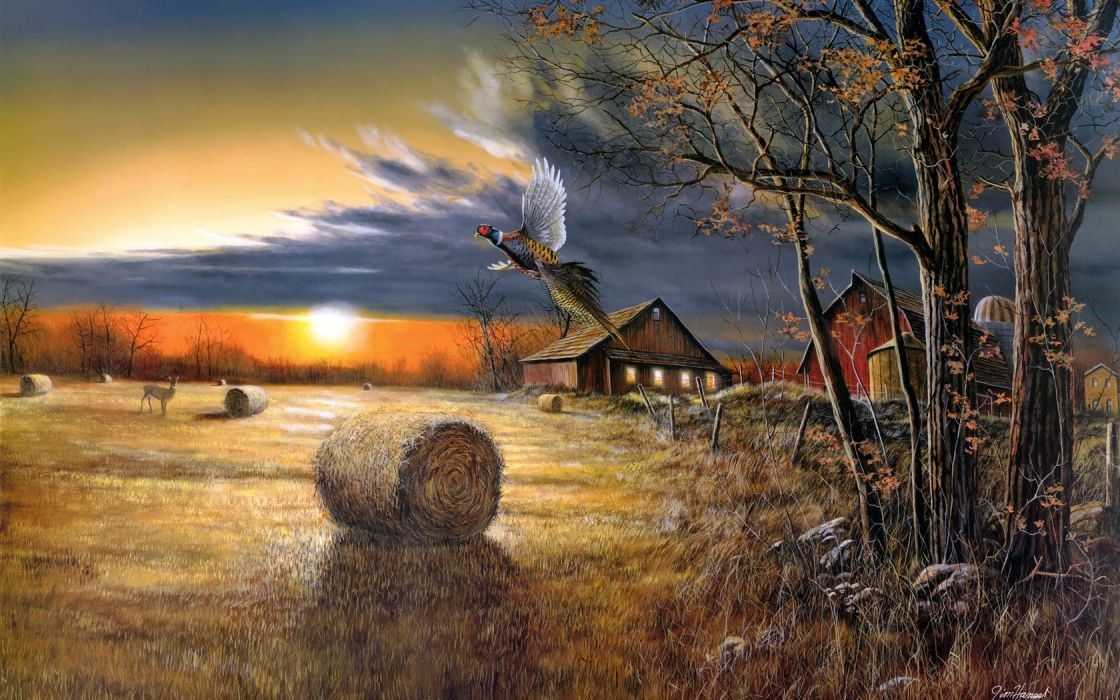 Cartoon Country Landscapes Wallpapers Download at
