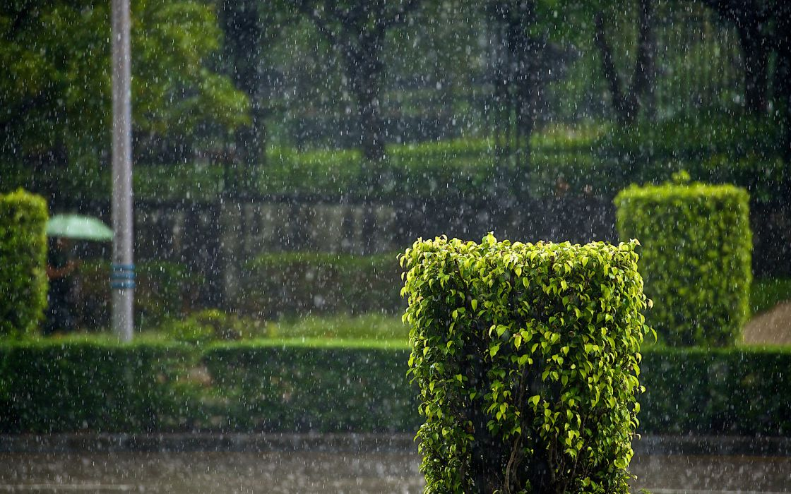landscapes nature rain storms water water-drops rain-drops drops parks photography wallpaper