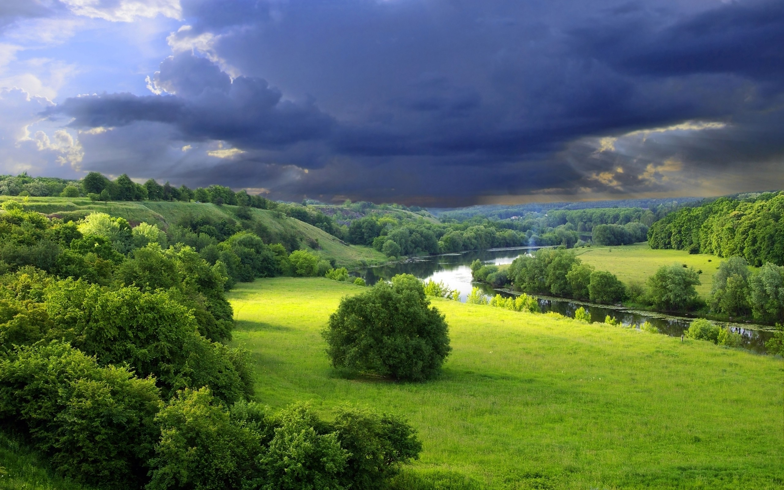Clouds landscapes nature gray bushes gloomy sky wallpaper - Nature wallpaper 2560x1600 ...
