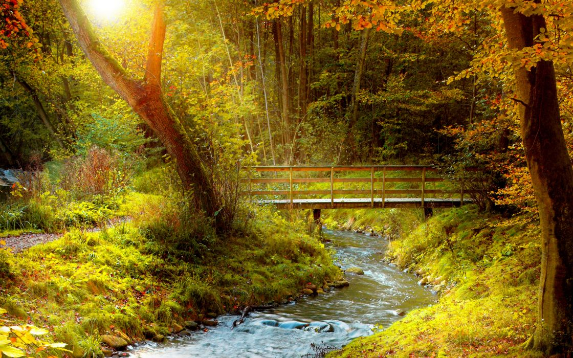 landscapes nature rivers trees forests bridges architecture autumn fall seasons wallpaper