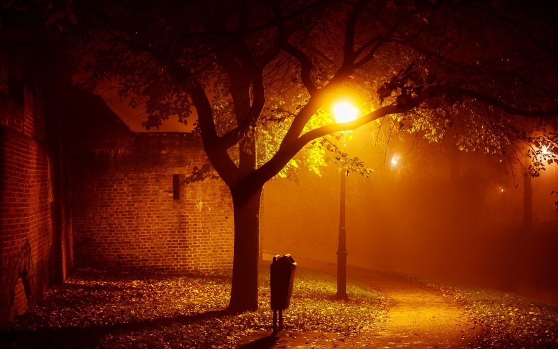 landscapes night lights mood autumn fall seasonal fog mist places houses buildings architecture trees lamps lamp-posts photography wallpaper