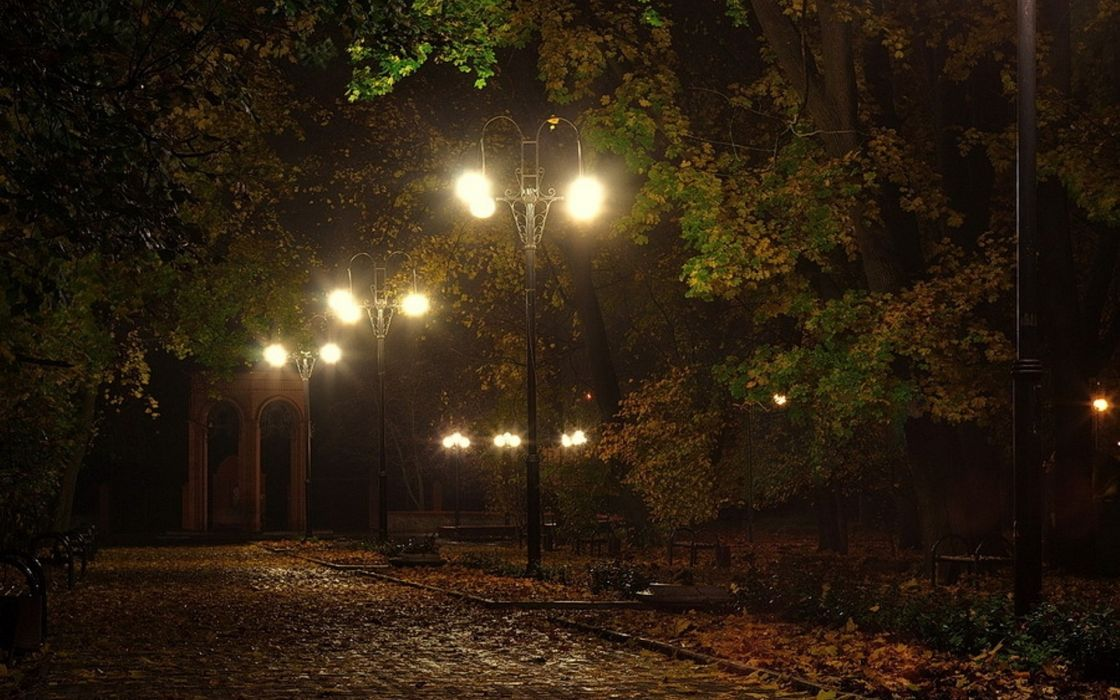 landscapes lamps lamp-posts benches lights night pathways roads lanes autumn fall seasons trees leaves mood  wallpaper