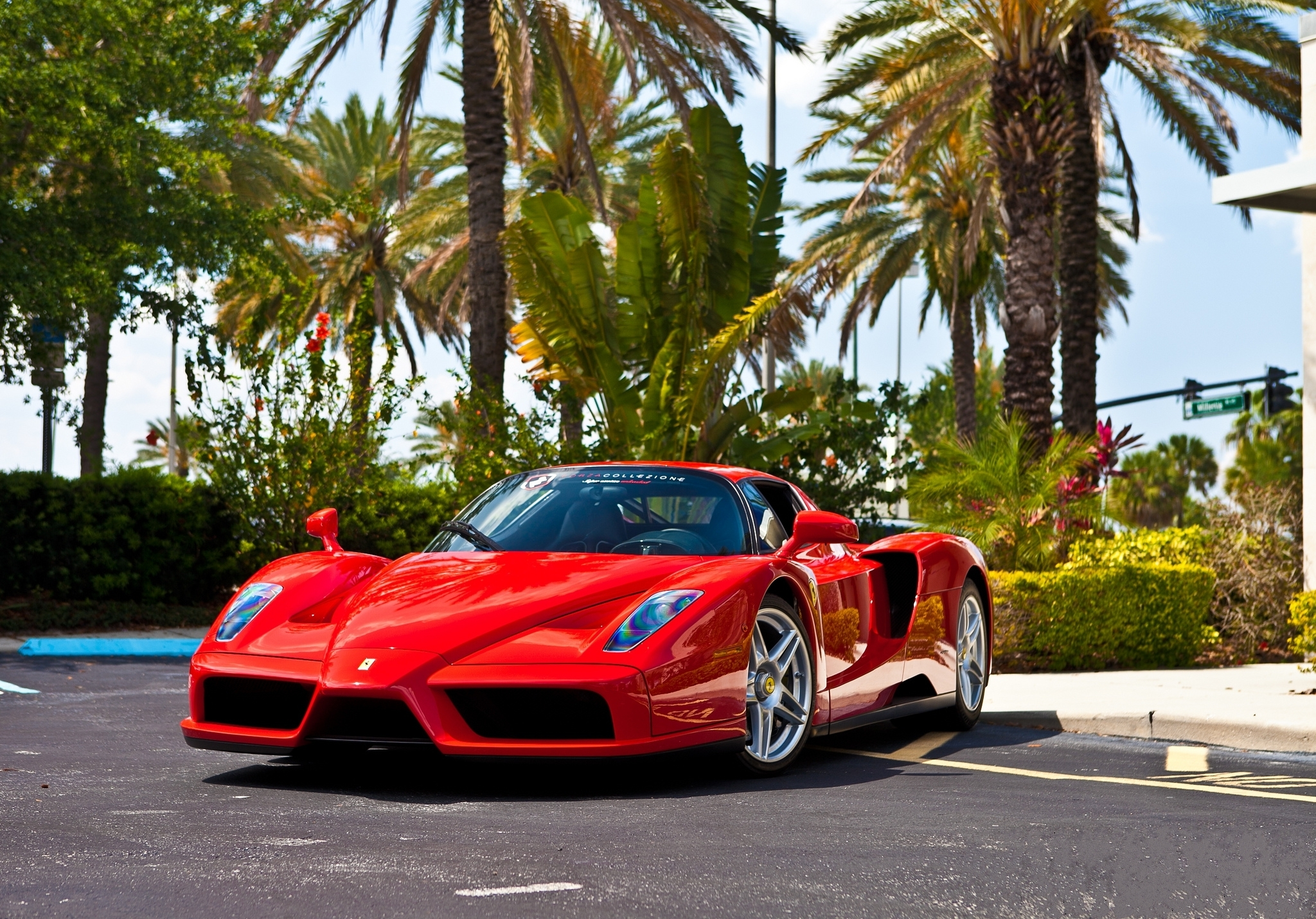 Vehicles cars ferrari enzo red exotic cars wallpaper - Luxury car hd wallpaper download ...