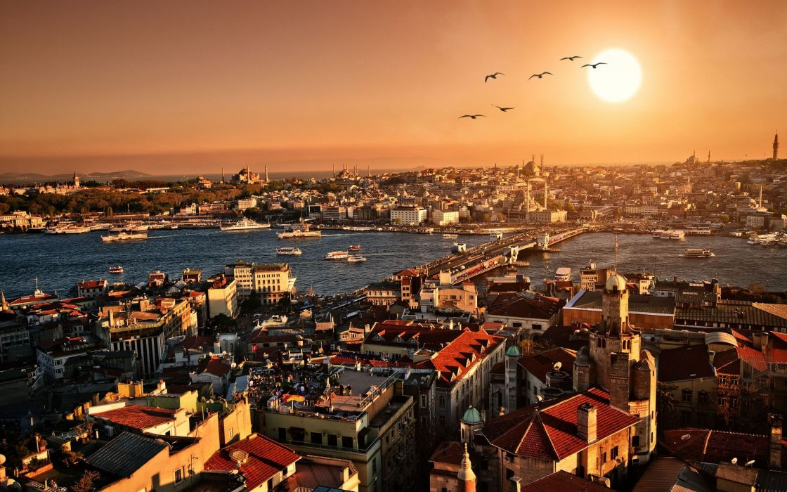 Istanbul cities architecture buildings sunsets scenic sunrises birds animals bridges scenic cityscapes wallpaper