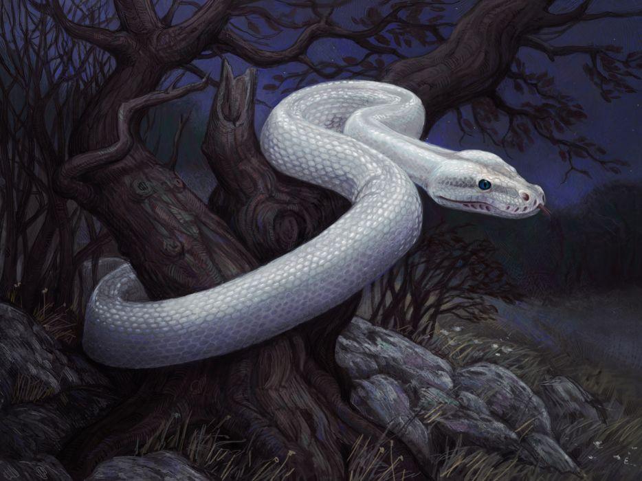 fantasy snakes art artistic dark landscapes creepy wallpaper