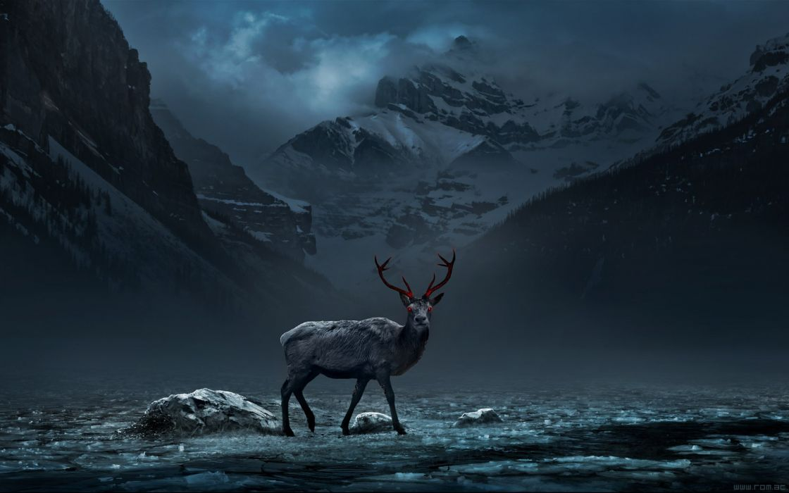 Deer Wallpapers HD for Android APK