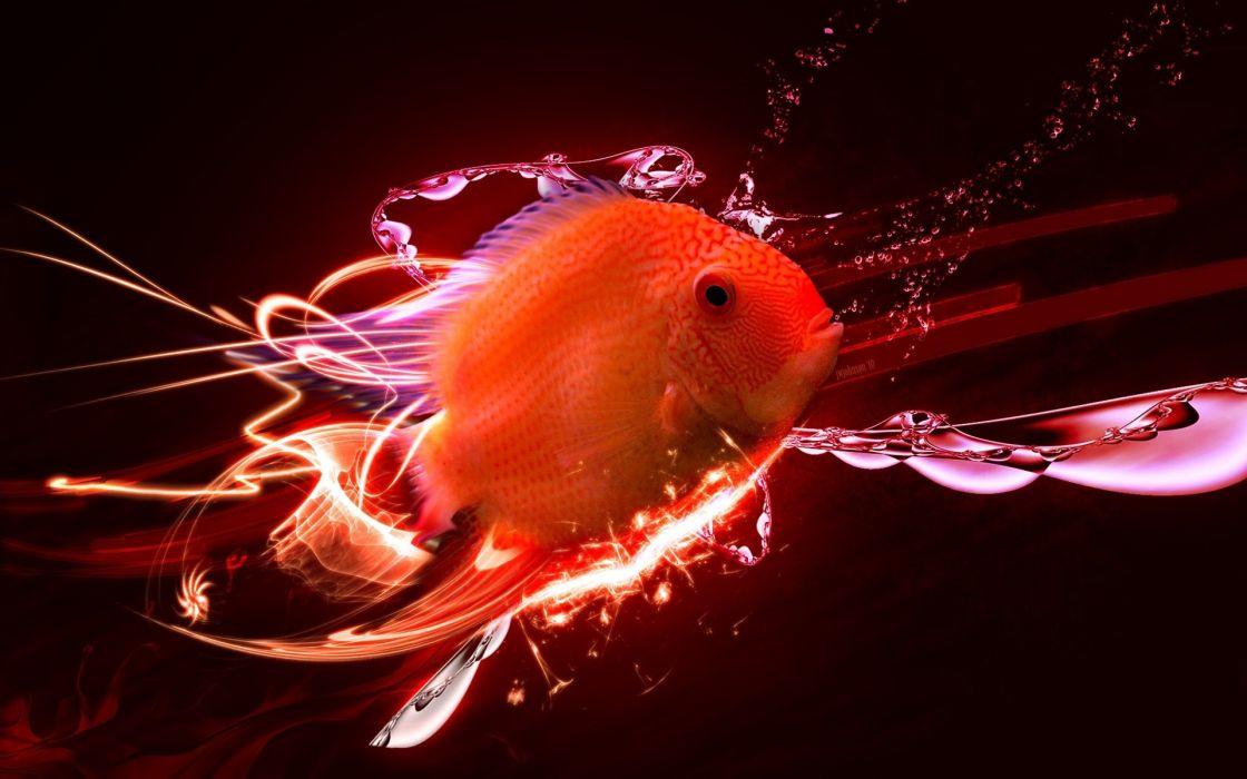 animals fish cg 3d digital-art manipulations colors orange bright wallpaper