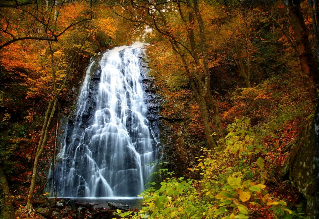 landscapes nature trees forest autumn fall seasons waterfall wallpaper