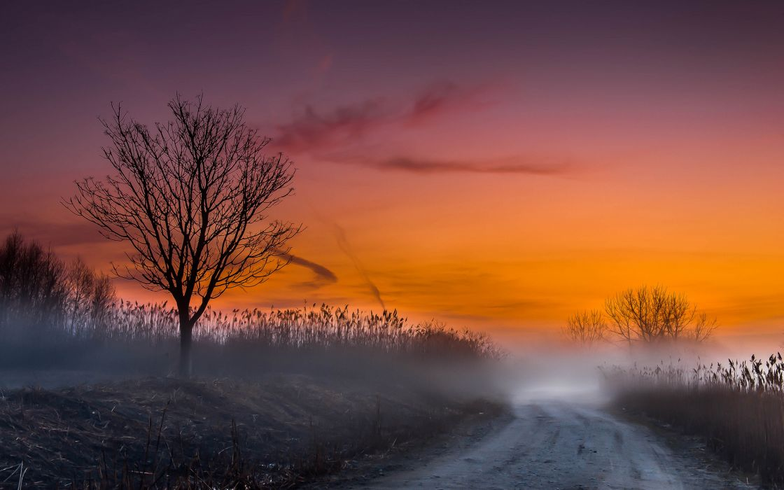 nature landscapes fog mist morning sunrise sunset road skies wallpaper