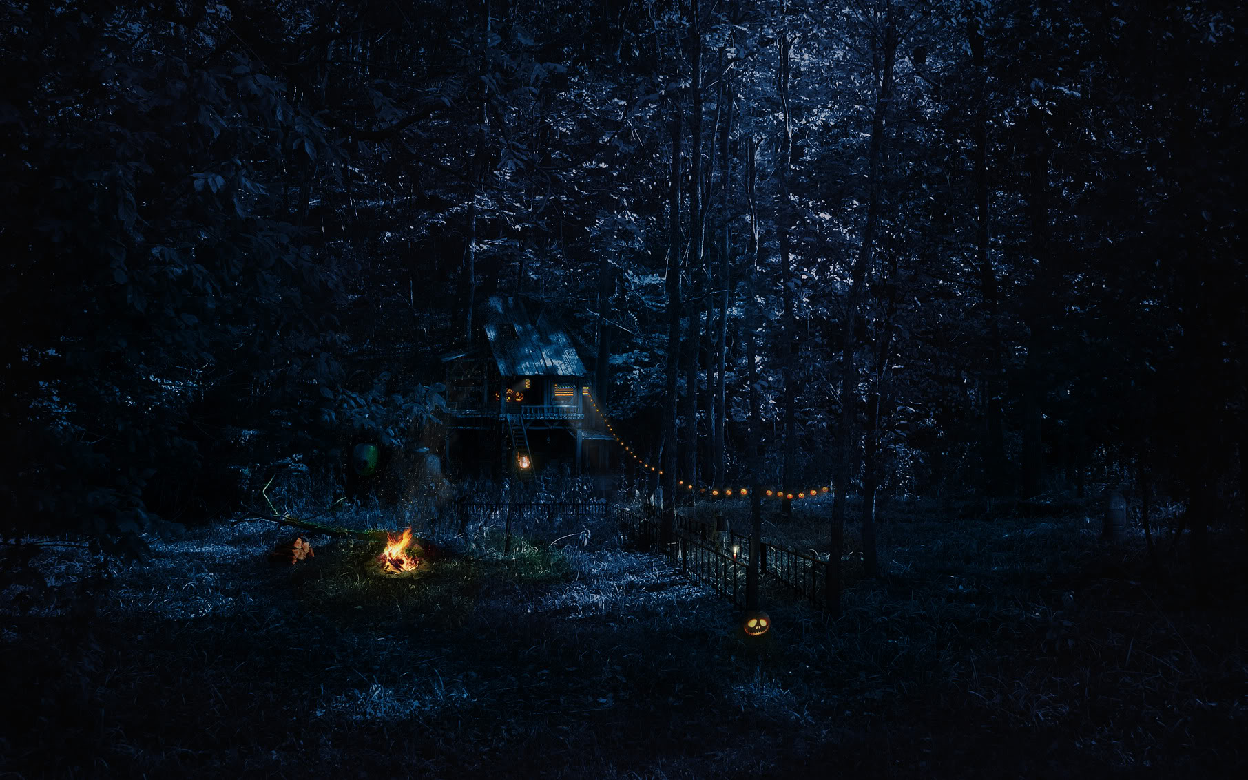 Scary Forest Dark Pictures