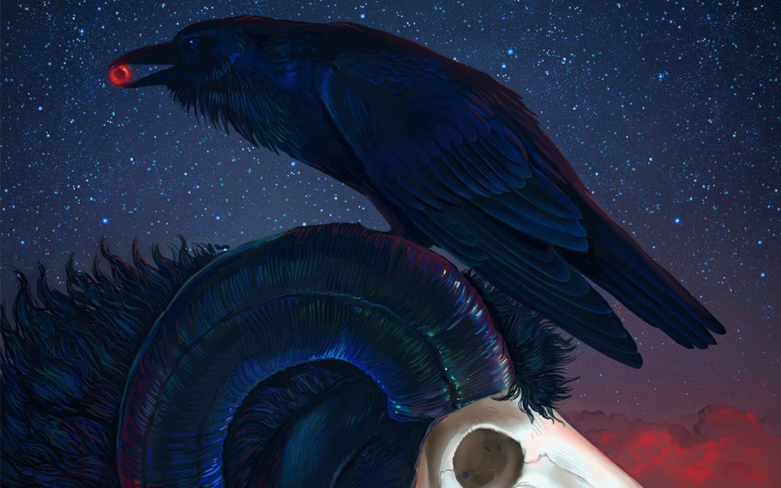 dark poe skulls raven crow birds animals horns skies stars occult withes witchcrart wallpaper
