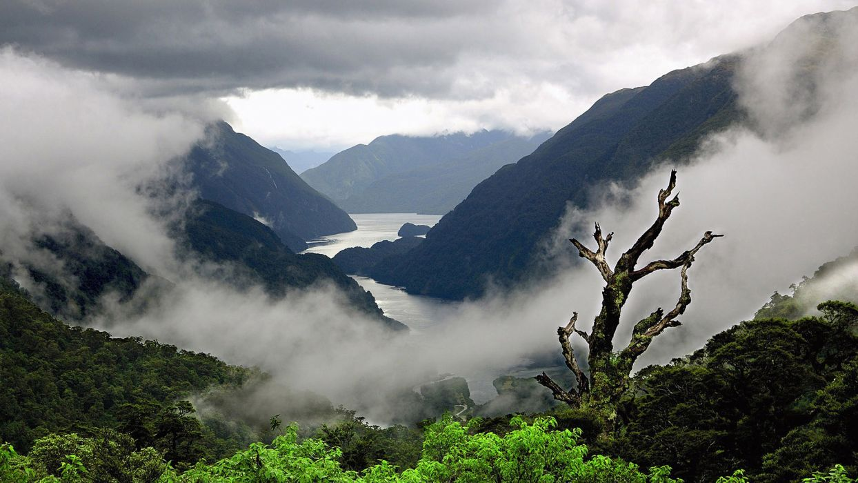 nature landscapes mountains trees forests rivers clouds fog mist scenic skies wallpaper