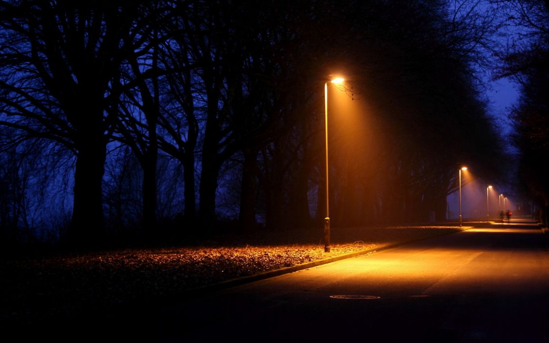 nature night lights lamps lamp-post trees lightbeams roads people alone wallpaper
