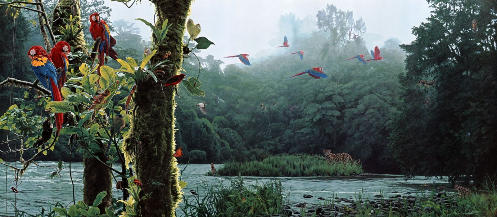landscapes nature trees forest jungle scenic paintings rivers birds parrot colors flying fantasy wallpaper