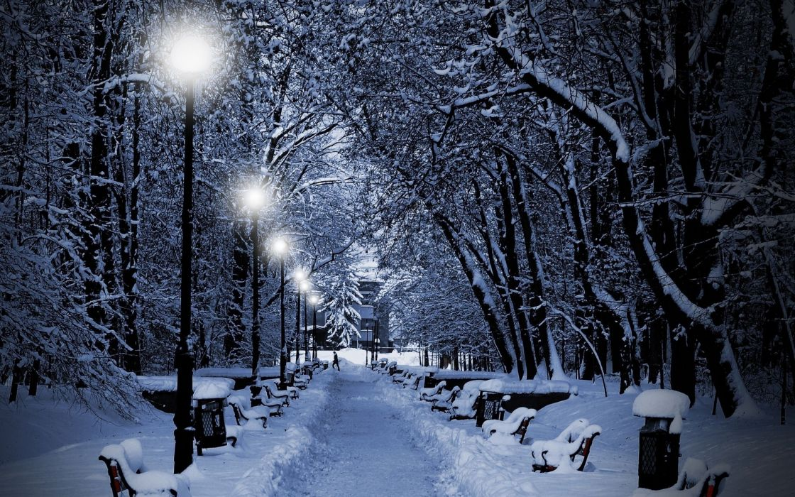 Landscapes Nature Winter Snow Snowflakes Snowing Trees Park White Night Lights Christmas Wallpaper